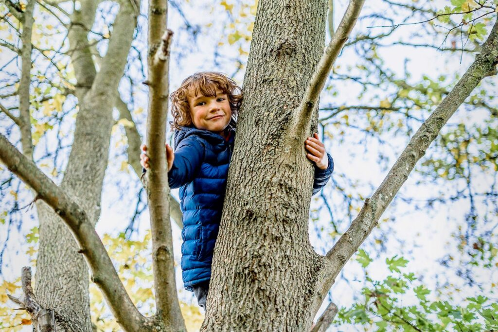 child climbing a tree at a school holiday club
